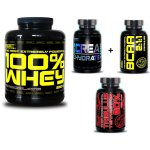 100% Whey Professional Protein - Best Nutrition