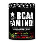 BCAA Amino Powder - Warrior Labs